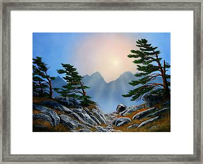 Windblown Pines Framed Print by Frank Wilson