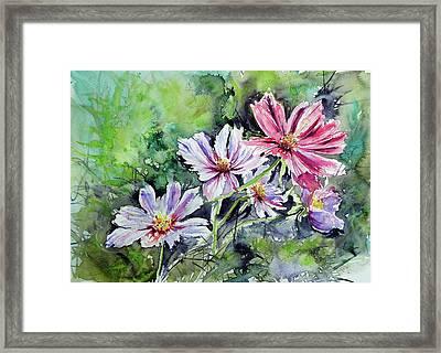 Windflower Framed Print by Kovacs Anna Brigitta