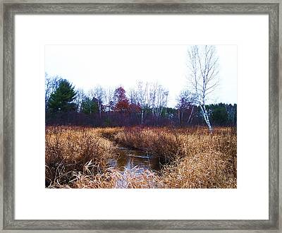 Winding Creek 1 Framed Print by Anna Villarreal Garbis