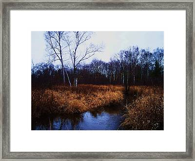Winding Creek 2 Framed Print