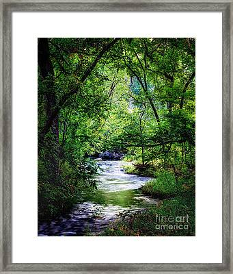 Winding Creek At Chickasaw National Recreation Area In Vertical Framed Print by Tamyra Ayles