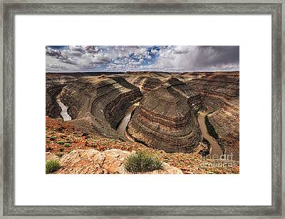 Winding Goosenecks Framed Print by Joan McCool