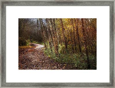 Winding Path Framed Print by Debra and Dave Vanderlaan