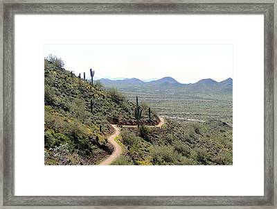 Framed Print featuring the photograph Winding Trail by Gordon Beck