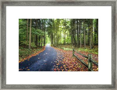 Winding Walkway Framed Print