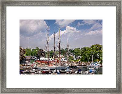 Windjammers In Camden Harbor Framed Print by Susan Cole Kelly