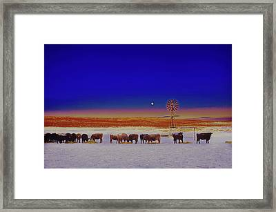 Windmill And Cows Night Feed Framed Print