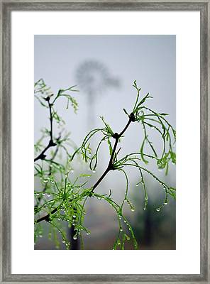 Windmill In The Mist Framed Print