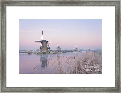 Windmills In The Netherlands In The Soft Sunrise Light In Winter Framed Print