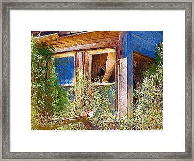 Framed Print featuring the photograph Window 2 by Susan Kinney