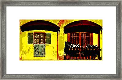 Window And Doors Framed Print by Lyle  Huisken