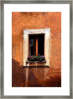 Window And Flowers Rome  Framed Print by Xavier Cardell