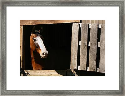 Window Framed Print by Angela Rath