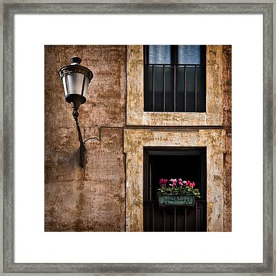 Window Box Framed Print by Dave Bowman