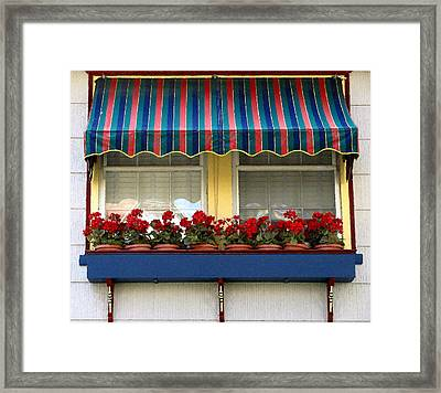 Window Box Geraniums Framed Print by Colleen Kammerer