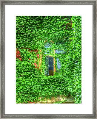 Window Dressing Framed Print by Connie Handscomb