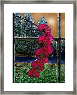 Window Dressing Framed Print by Gordon Beck