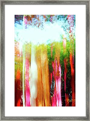 Window Dressing Framed Print