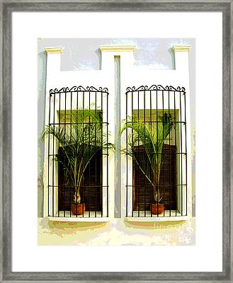 Window Ferns By Darian Day Framed Print by Mexicolors Art Photography