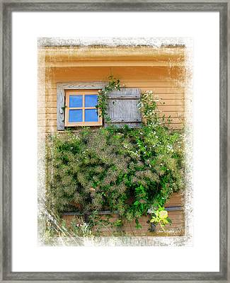 Framed Print featuring the photograph Window Floral In Plymouth by Joan  Minchak