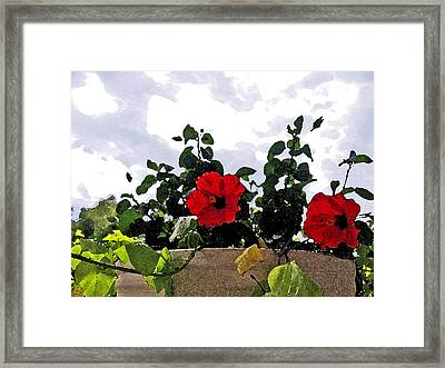 Window Flowers Framed Print by James Granberry