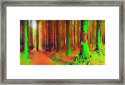 Window Frames Framed Print