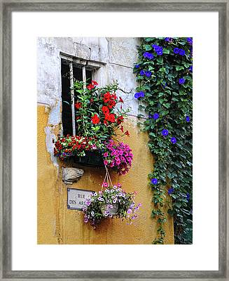 Window Garden In Arles France Framed Print