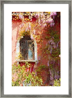 Window In Venice With Wisteria Framed Print by Michael Henderson