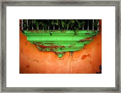 Window Ledge Framed Print by Shane Rees