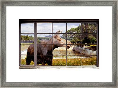 Window - Moosehead Lake Framed Print by Peter J Sucy