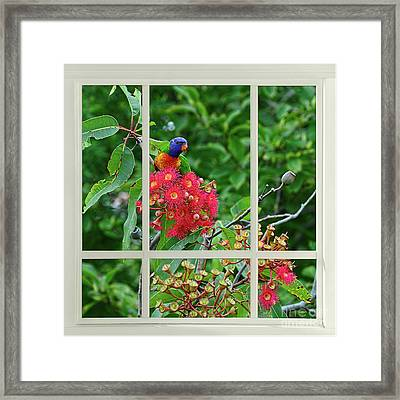 Window Of Nature By Kaye Menner Framed Print