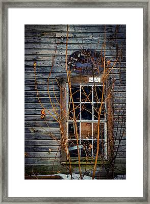 Framed Print featuring the photograph Window Shopping by Kendall McKernon