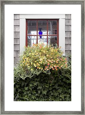 Windowbox - Nantucket Framed Print