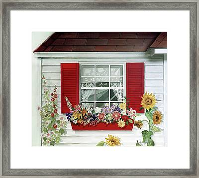 Windowbox With Cat Framed Print
