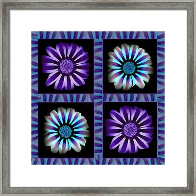 Windowpanes Brimming With  Moonburst Stripes Of Flowers - Scene 1 Framed Print by Jacqueline Migell