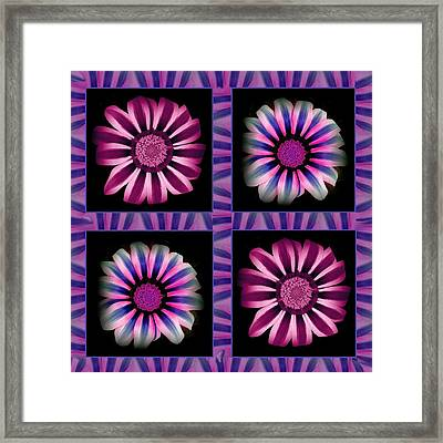 Windowpanes Brimming With  Moonburst Stripes Of Flowers - Scene 3 Framed Print by Jacqueline Migell