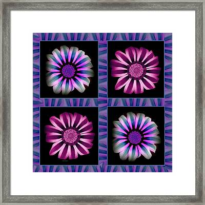 Windowpanes Brimming With  Moonburst Stripes Of Flowers - Scene 5 Framed Print by Jacqueline Migell