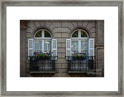 Windows In Toulouse Framed Print by Elena Elisseeva