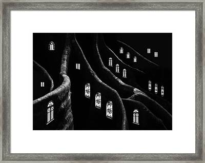 Windows Of The Forest Framed Print by Jacqueline Hammer