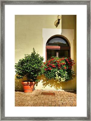 Windows Of Vienne 2 Framed Print