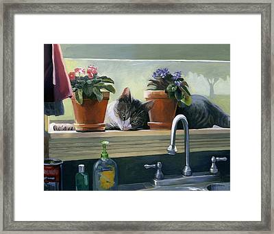 Windowsill Cat Framed Print