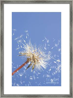 Winds Of Change Framed Print by Jorgo Photography - Wall Art Gallery