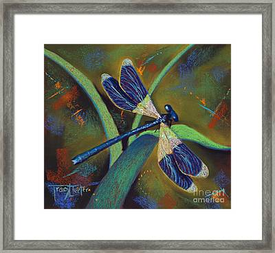 Winds Of Change Framed Print by Tracy L Teeter