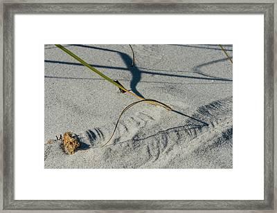 Winds Sand Scapes Framed Print