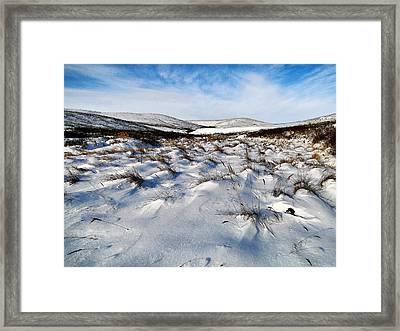 Framed Print featuring the photograph Windswept by Blair Wainman