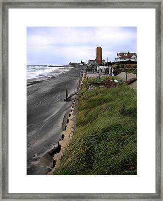 Windswept Framed Print by Colleen Kammerer