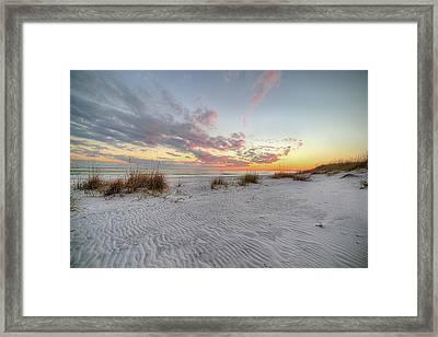 Windswept Dunes In South Walton Framed Print