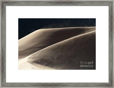 Windswept Dunes Framed Print by Sandra Bronstein