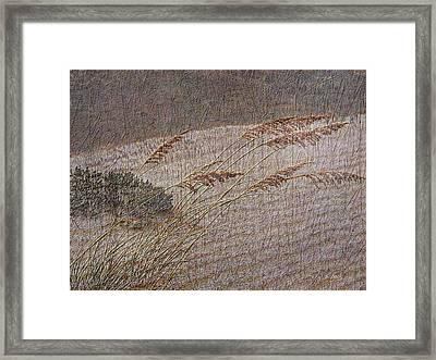 Windswept Framed Print by Gordon Beck