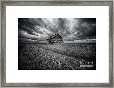 Windswept Framed Print by Ian McGregor